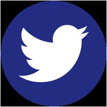 Logo Twitter Fundación Gómez PArdo